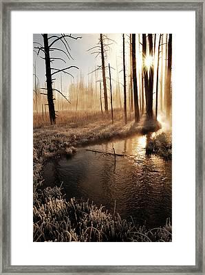 Frosty Yellowstone Morning Framed Print by by Adam Christensen