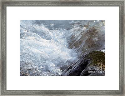 Froth Framed Print by Sharon Talson