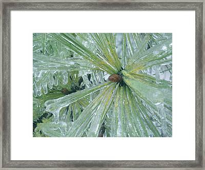 Frozen Assets Framed Print by Linda Pope