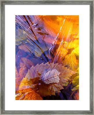 Frozen Leaves ... Framed Print by Juergen Weiss