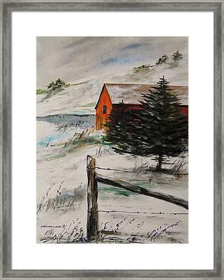 Frozen Pond Framed Print by John Williams