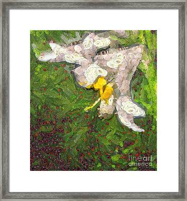 Fruit Lily Framed Print by Odon Czintos