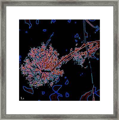Fu Framed Print by Keren Shiker