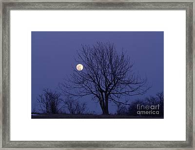 Full Moon Framed Print by Michal Boubin