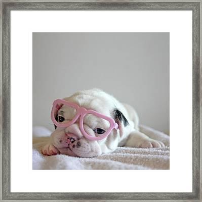 Funny French Bulldog Framed Print by Retales Botijero