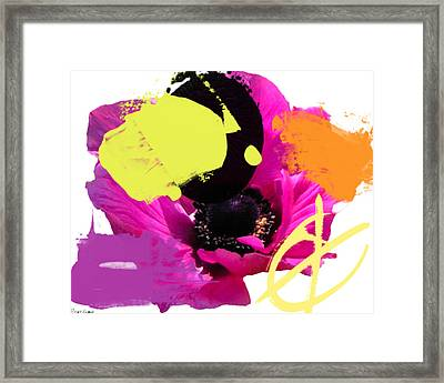Fuschia Chingasso Framed Print by Geronimo