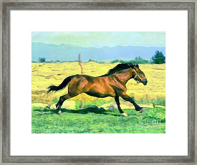 Gallope Framed Print by Odon Czintos