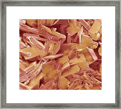 Gallstone Crystals, Sem Framed Print by Steve Gschmeissner