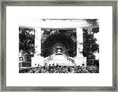 Garden Circles Framed Print by John Rizzuto