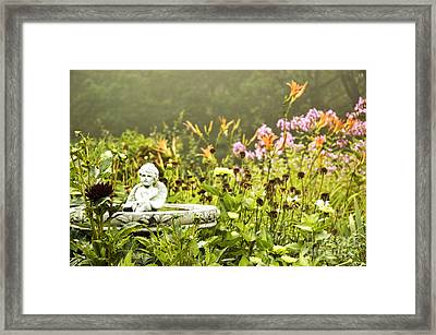 Garden Framed Print by HD Connelly