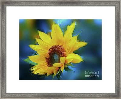Garden Sun Framed Print by Jutta Maria Pusl