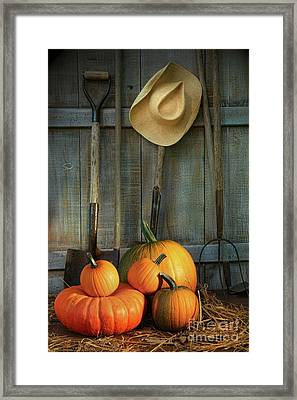 Garden Tools In Shed With Pumpkins Framed Print by Sandra Cunningham