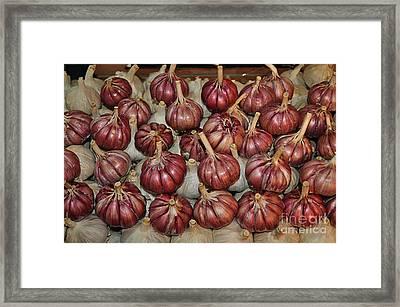 Garlic Framed Print by Mary Machare