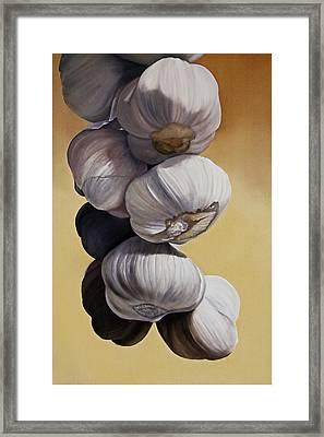 Garlic Still Life Framed Print by Matthew Bates