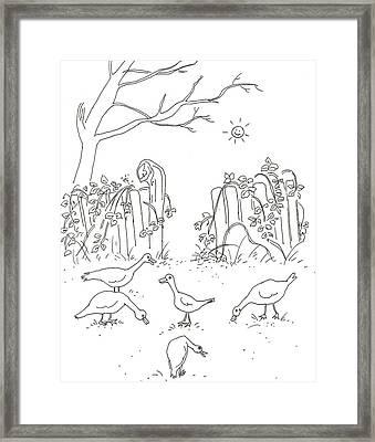 Geese In The Garden Framed Print by Vass Eva Rozsa