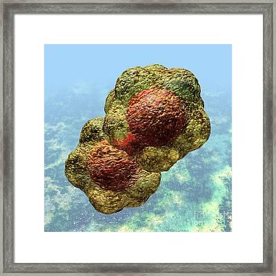 Geminivirus Particle Framed Print by Russell Kightley