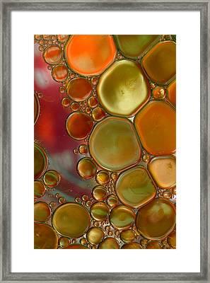 Gems Framed Print by Rebecca Cozart