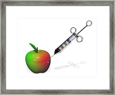 Genetically Modified Apple Framed Print by Laguna Design