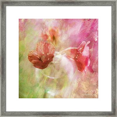 Gentleness Framed Print by Linde Townsend