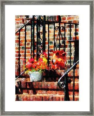 Geraniums And A Pig Framed Print by Susan Savad