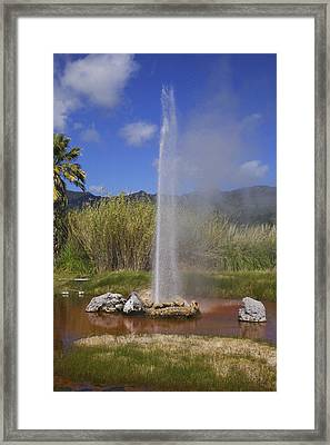 Geyser Napa Valley Framed Print by Garry Gay