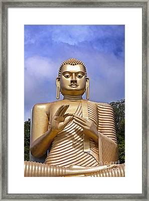Giant Gold Bhudda Framed Print by Jane Rix