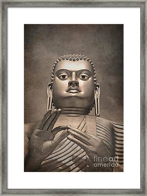 Giant Gold Buddha Vintage Framed Print by Jane Rix