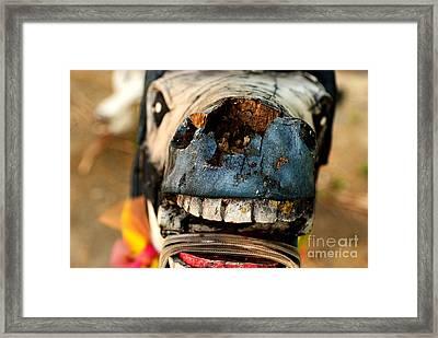 Giddyup Framed Print by Dean Harte