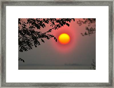 Gilded Sunrise Glow Framed Print by Rebecca Sherman