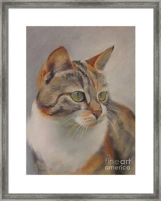 Ginger Framed Print by Sabina Haas