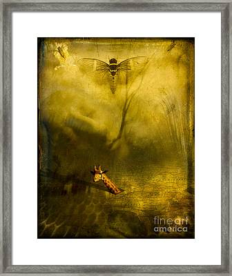 Giraffe And The Heart Of Darkness Framed Print by Paul Grand