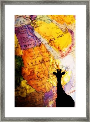 Giraffe Silhouette With Map Background Framed Print by Chris Knorr