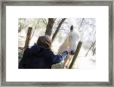 Girl Stroking Camargue Horse At Fence Framed Print by Sami Sarkis