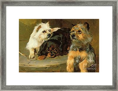 Give A Poor Dog A Bone Framed Print by George Wiliam Horlor
