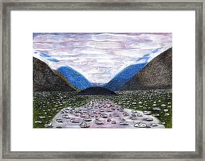 Glacier Bay   Alaska Framed Print by Al Goldfarb