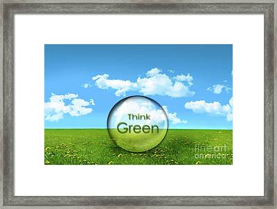 Glass Sphere In A Field Of Tall Grass Framed Print by Sandra Cunningham