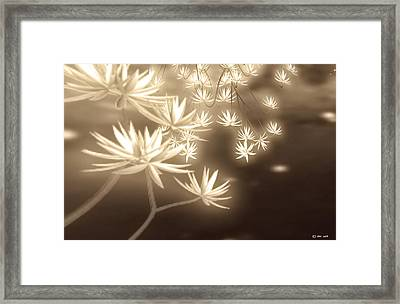 Glowing Flower Fractals Framed Print by Yvon van der Wijk