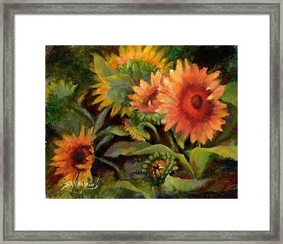 Glowing Sunflowers Framed Print by Sharen AK Harris
