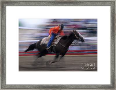Rodeo Go For Broke Framed Print by Bob Christopher