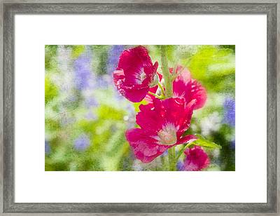 Go Paint In The Garden Framed Print by Toni Hopper