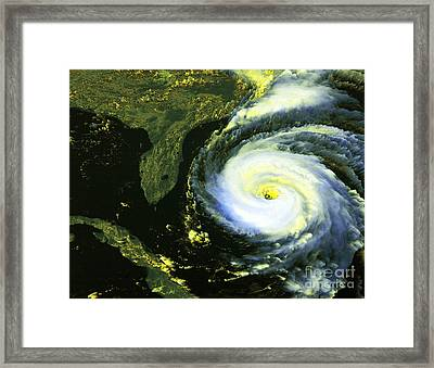 Goes 8 Satellite Image Of Hurricane Fran Framed Print by Science Source