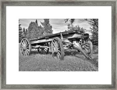 Gold Rush Wagon Framed Print by Thomas Payer