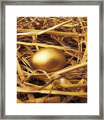 Golden Egg Framed Print by Tony Craddock