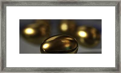 Golden Eggs Framed Print by James Barnes