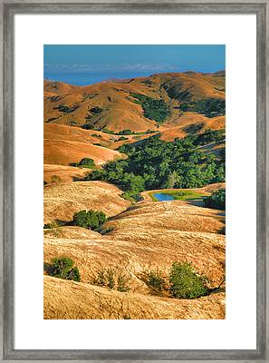 Golden Hills II Framed Print by Steven Ainsworth