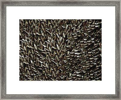 Golden Leaf Framed Print by David Dehner