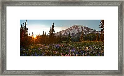 Golden Meadows Of Wildflowers Framed Print by Mike Reid