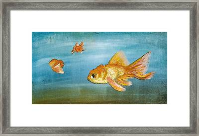 Goldfish Framed Print by Anthony Cavins