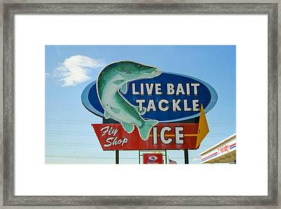 Gone Fishing Framed Print by Matthew Bamberg