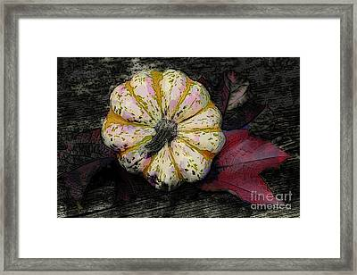 Gothic Pumpkin Framed Print by Jutta Maria Pusl